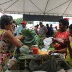 MST no extremo sul da Bahia, realiza 1ª feira Regional de Agroecologia do Brasil.