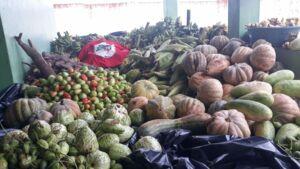 Dia das Mães: MST doa 5 toneladas de alimentos na Chapada Diamantina