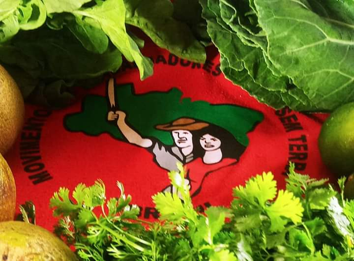 Comercialização de cestas agroecológicas: levando alimento saudável na pandemia