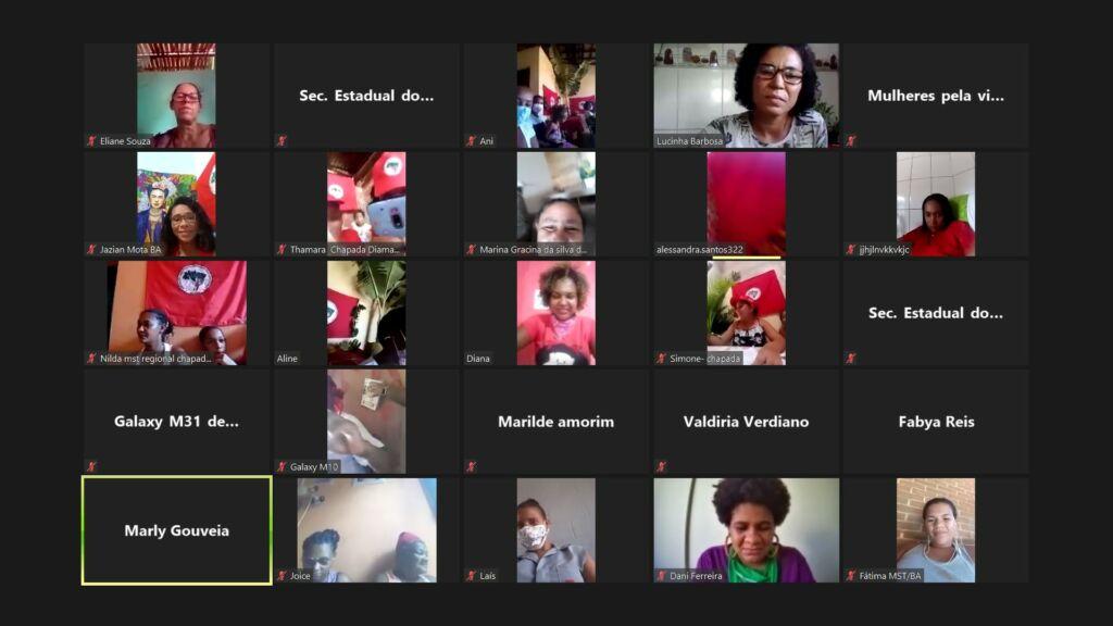 Plenária Virtual de Mulheres na Chapada Diamantina