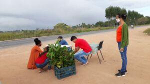 Escola Municipal Paulo Freire no Extremo Sul da Bahia comemora um ano do Projeto Plantando o Amanhã