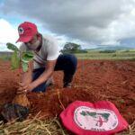 No Extremo Sul da Bahia, MST realiza ações durante a Semana do Meio Ambiente