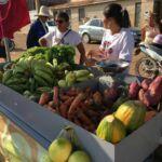 Em Sento Sé/BA, Mulheres Sem Terra realizam Feira Agroecológica todas as sextas-feiras